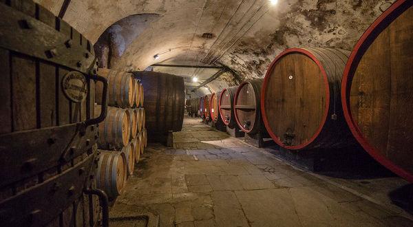 Винные подвалы Италии